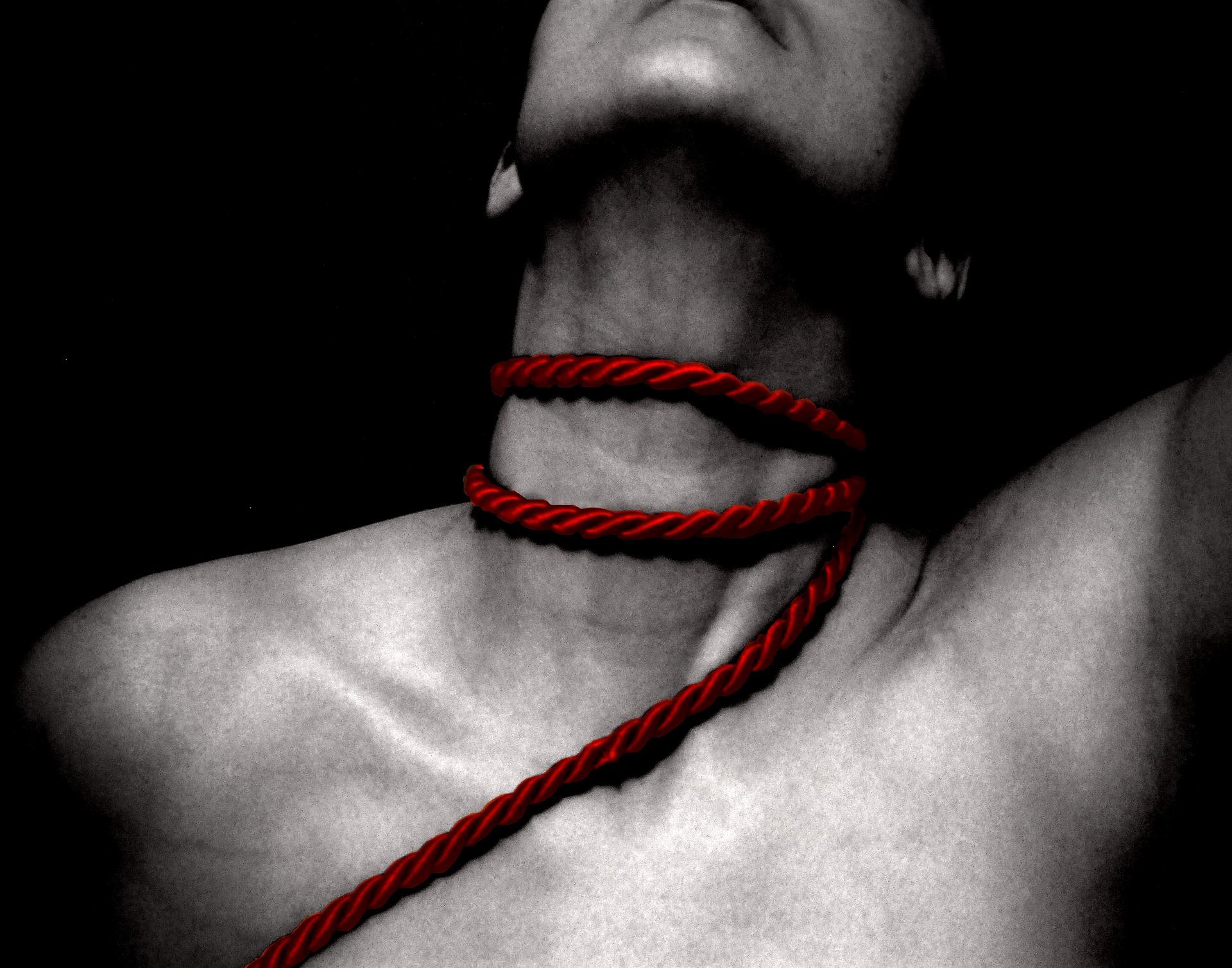 best bondage rope